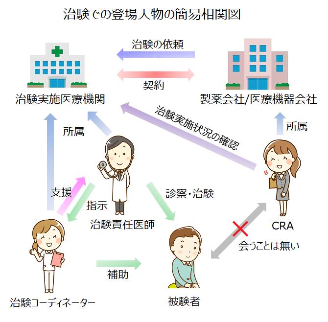 治験での登場人物の簡易相関図